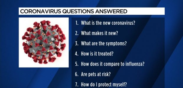 Frequently Asked Questions on Middle East respiratory syndrome Coronavirus